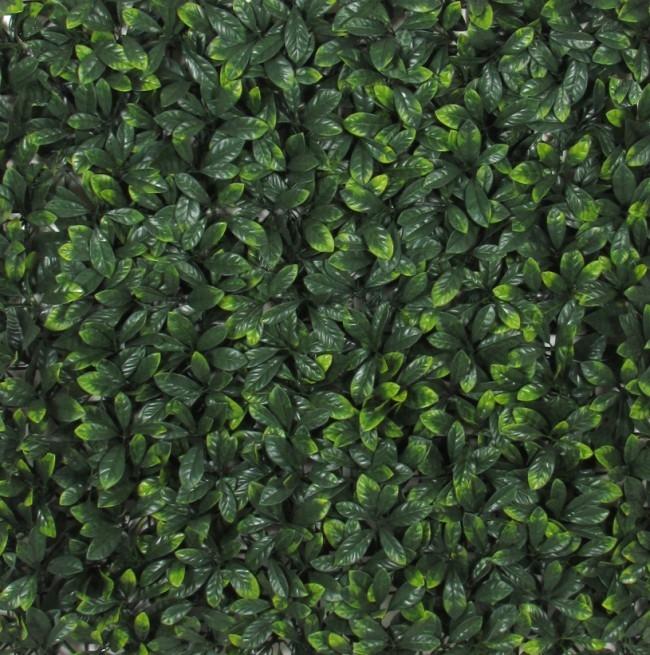 Siepe artificiale pitosforo in mattonelle for Giardino artificiale