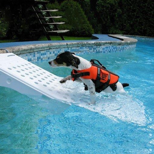 Rampa risalita anti annegamento cani e gatti piscine for Arredo piscina