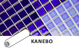 Spazzole Kanebo