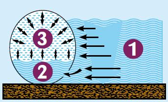 Ovoline principio acqua aria