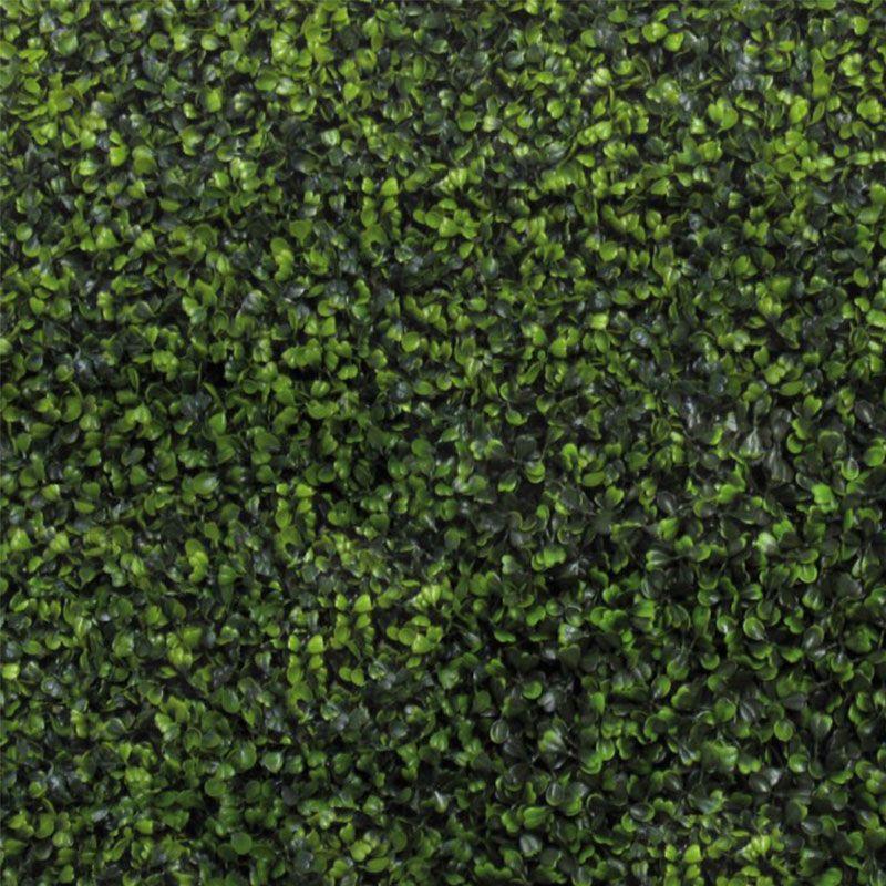 Siepe artificiale bosso in mattonelle for Bosso siepe